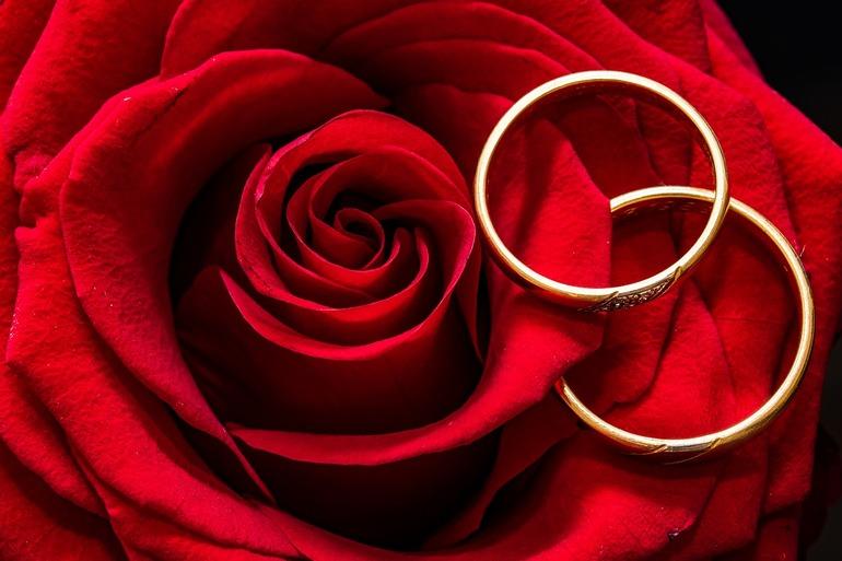 Złote pierścionki dla wszystkich pań