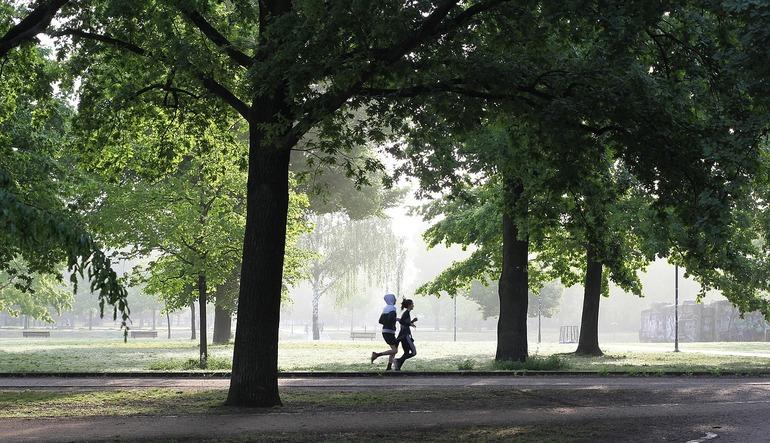 Kiedy biegać – rano czy wieczorem?